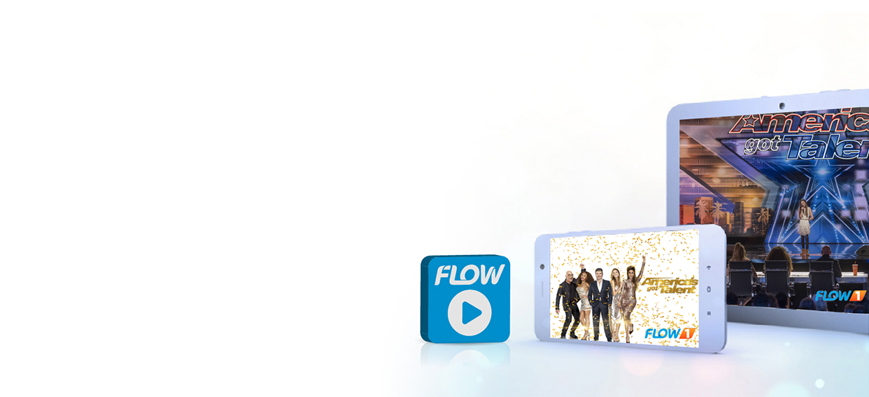 Flow to Go